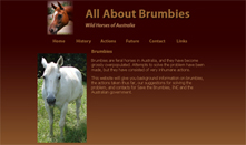 All About Brumbies